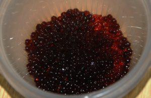 Caviar de Miel de Palma