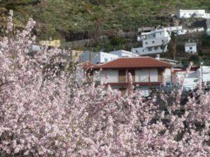 Hotel Rural de Imada